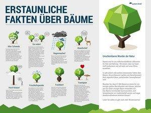 Infografik zu Bäumen