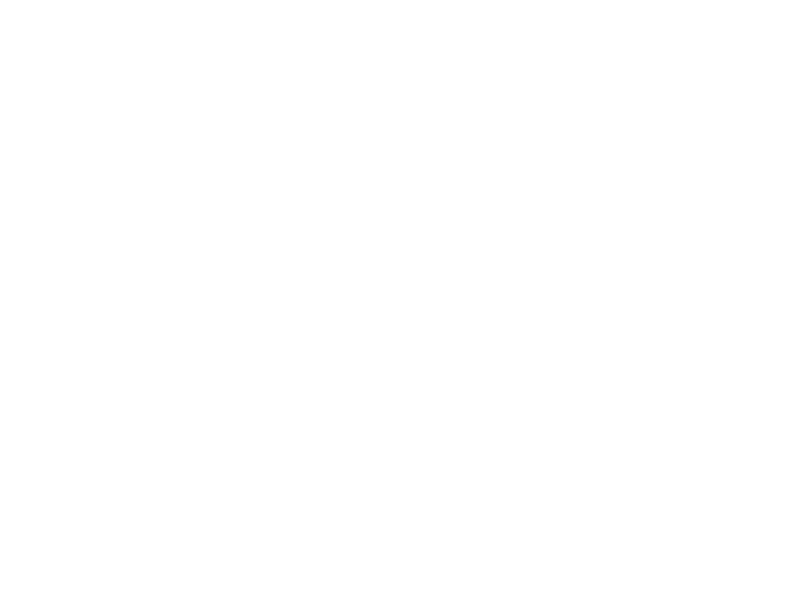 Expertise der Internetagentur Bonn: Trophäe